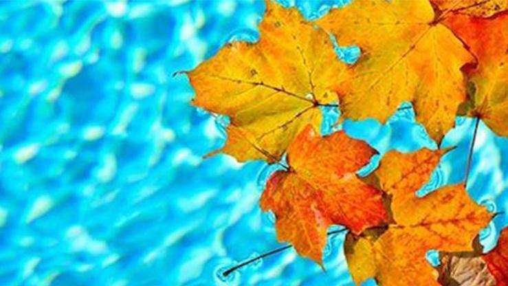 Ультрафиолет в бассейне